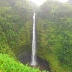 ハワイ島最大の滝「アカカ滝(Akaka Falls)」