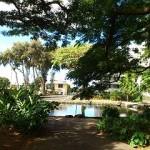 クナワイの泉(Kunawai Springs)