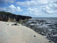 イシキ浜海岸線