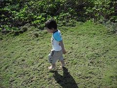 広場の芝生の上で喜ぶ我が子