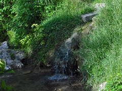 イキガンカー(男の川)