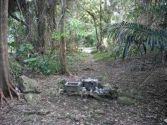 森の中に拝所(香炉)があります。