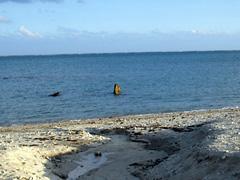 海の中にヤハラヅカサの石碑が見えます。