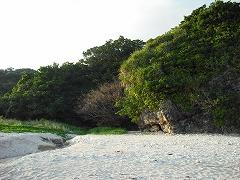 きれいな砂浜が広がります。