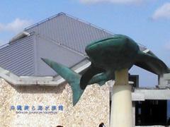 入口のジンベエザメ像