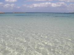 透明度の高い海です。